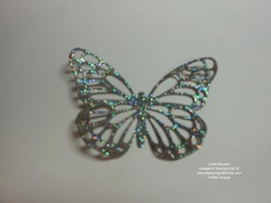 Iredscent Butterfly_Linda Bauwin