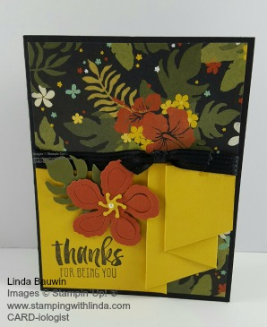 Pleated Card Linda Bauwin