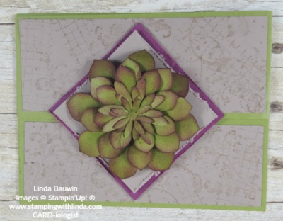 #succulent #creativefold #lindabauwin