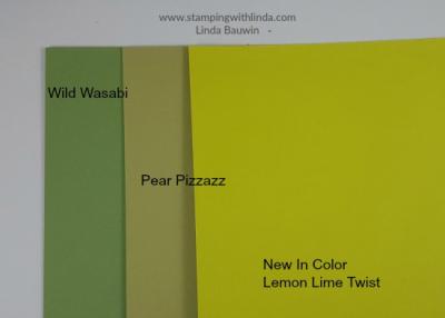 #incolor #lemonlimetwist #lindabauwin