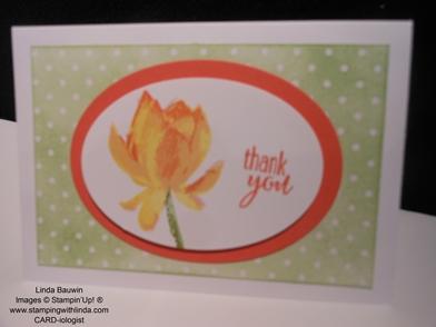 Blushing Bride_Color Comb_Sale-a-Bration_Linda Bauwin