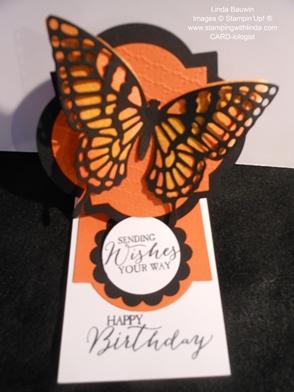 Butterfly Basics_Creative Fold_Linda Bauwin