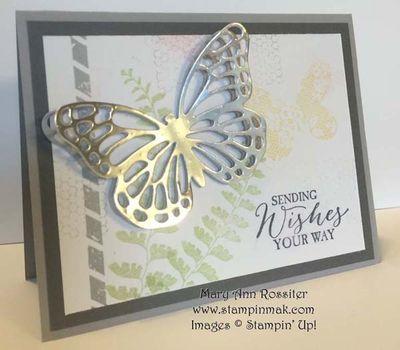 Butterfly Basics_Linda Bauwin_M