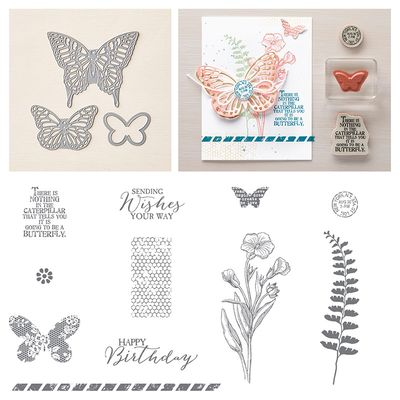Butterfly Basics_Linda Bauwin