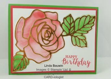 Rose Wonder Linda Bauwin