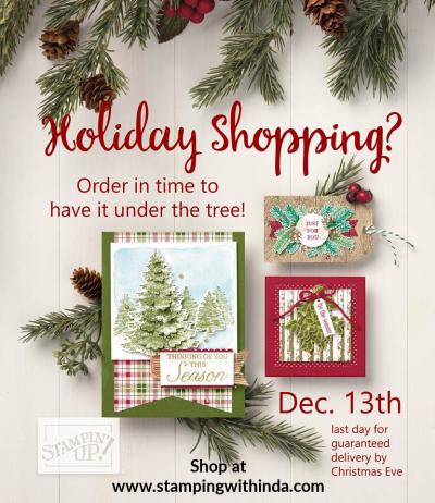 #holidayshoppingstampingup #lindabauwin (1)