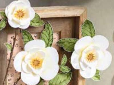 #goodmorningmagnoliaflowers  #hotairballoonpunch  #lindabauwin