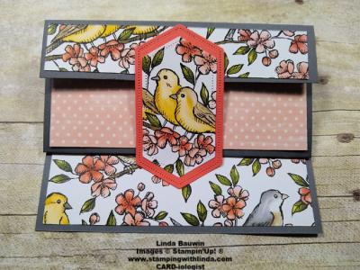 #birdballardsuite  #freeasabirdbundle  #lindabauwin