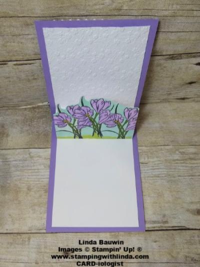 #stepcard  #ornatelayersdies  #creativeinkingbloghop  #lindabauwin