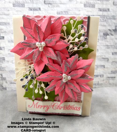 #poinsettiapetalsbundlle  #pinkpoinsettis  #lindabauwin