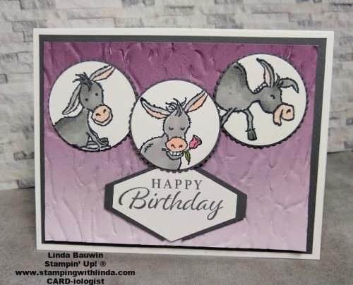 #darlingdonkeys  #saleabration  #techniquevideo  #lindabauwin