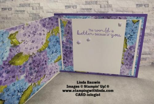 #funfoldcard  #showingoffdesignerseriespaper  #lindabauwin