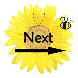 BeeBlogHopNext_medium (1)