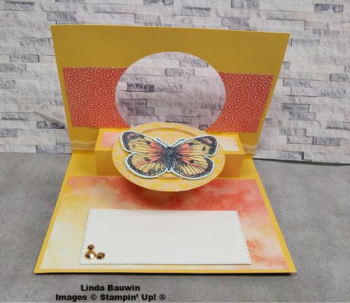 #awinnerfirst  #butterflychallenge  #kimbaker  #inside  #lindabauwin (1)