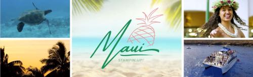 #maui  #su2021inccnetivetrip