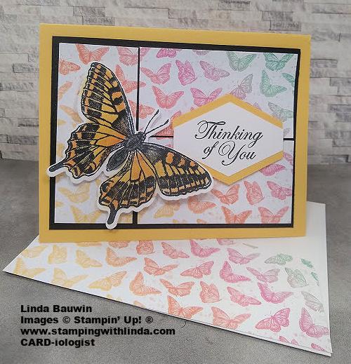 #paperlayout  #butterflybrilliance  #lindabauwin