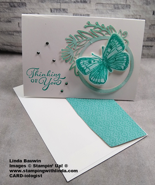 #creatingyourownombrelook  #butterflybrilliancecollection  #lindabauwin