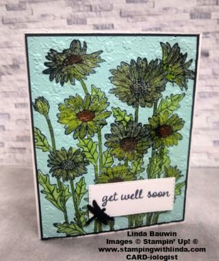 #daisygarden  #backgroundstamp  #lindabauwin